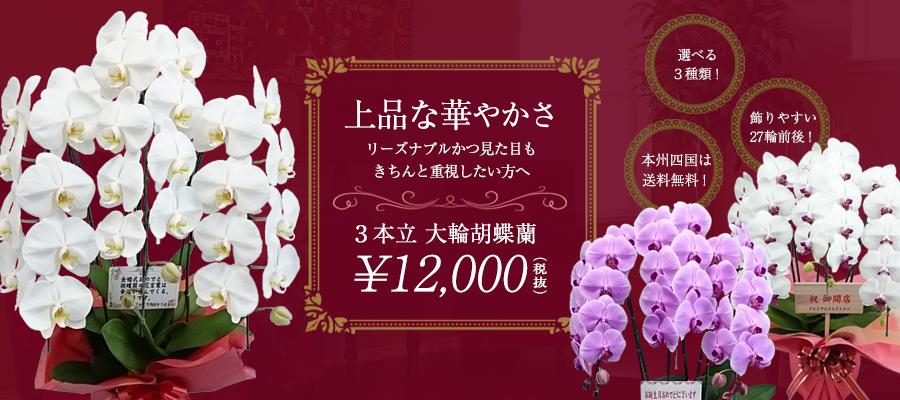 12000円均一